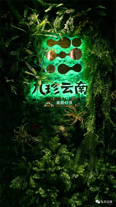 奥毅工程案例   九珍云南音乐餐吧